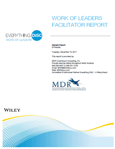 Everything DiSC® Work of Leaders© Facilitator Report Sample